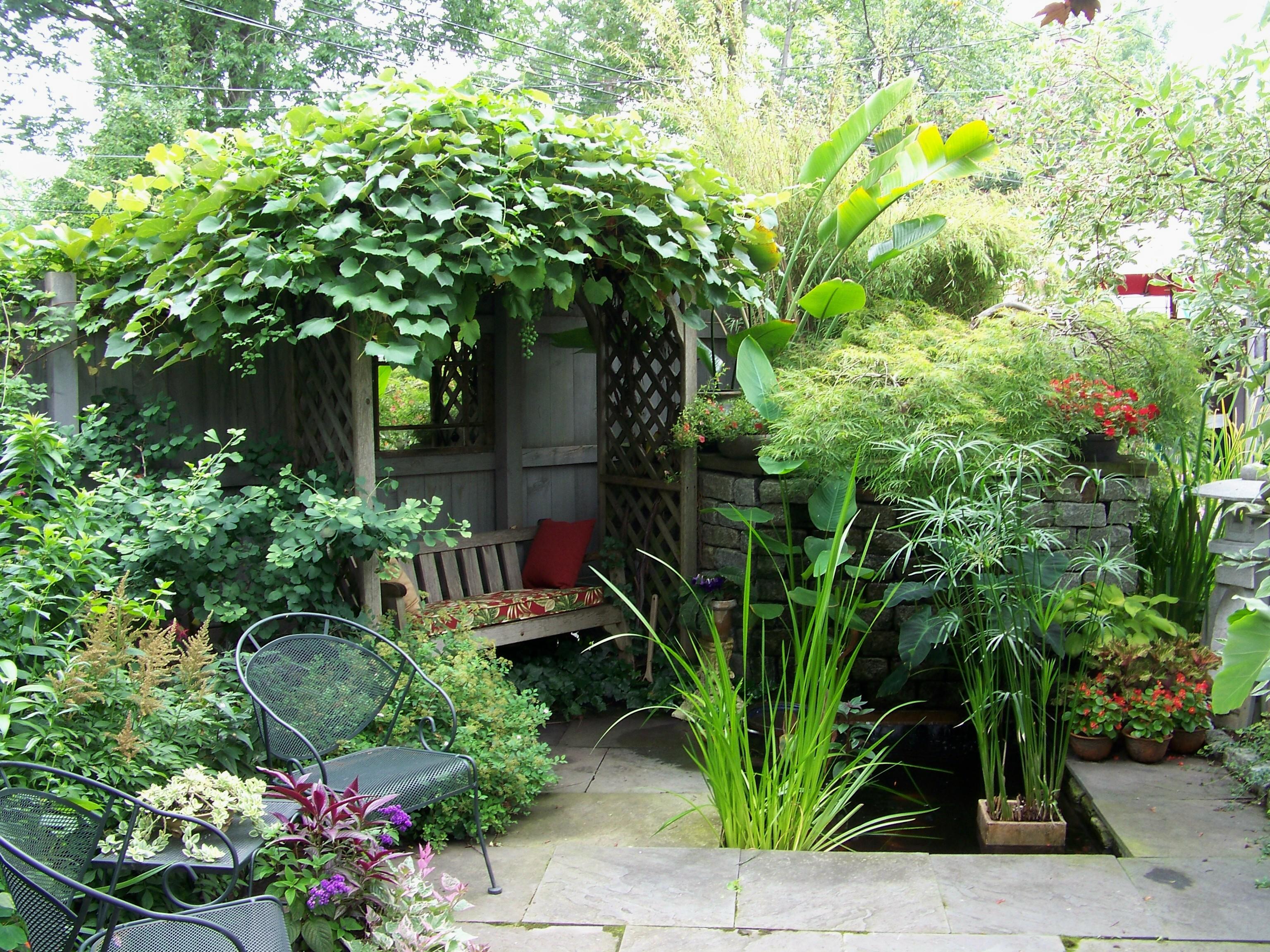 backyard garden walk