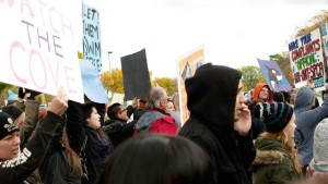 An image from a previous public protest in front of Marineland
