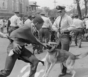 Bull Conner's cops and dogs go after black people fighting for equal rights in Birmingham, Alabama in 1963
