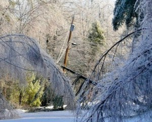 One of the so-called 'severe weather' storms that caused mulit-hundreds of millions of dollars of damage in southern Ontario over the past few years. But, psst, psst. Don't go gettling Harper and company that we may be dealing with climate change.