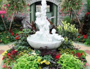 Escape winter's cold and enjoy a bit of spring at Niagara Park's Floral Showhouse