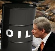 Canada's Prime Minister Stephen Harper has made the country especially vulnerable to recession or worse by putting so many eggs in the tar sands basket.