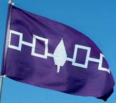 The Haudenosaunee flag - Indigenous hunters call for peace and respect