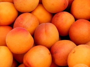We can do our part to keep our Great Lakes waters safe for us and for other living beings we share them with by purchasing apricots and other organic, more environmentally friendly products mentioned in this post. Apricots. Photo Credit: Dennis Hill