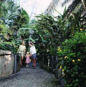 Leave the winter cold behind in Niagara Park's world-renown Butterfly Conservatory