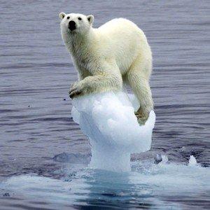 polar-ice-melt-1-300x300