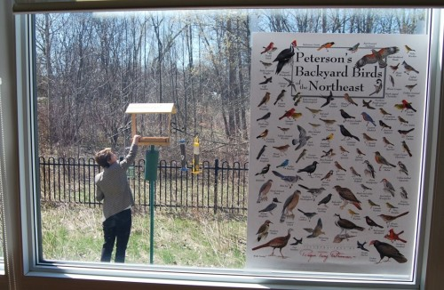 Brock University researcher Kerrie Pickering fills a bird feeder at the Woodlands of Sunset long-term care facility in the Niagara community of Welland, Ontario