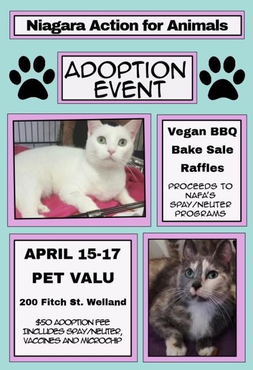 NAfA Adoption Event_Pet Valu_2016 (2)