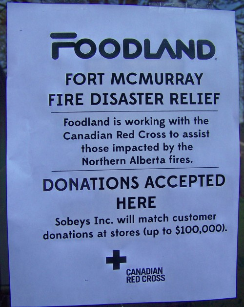 foodland poster one