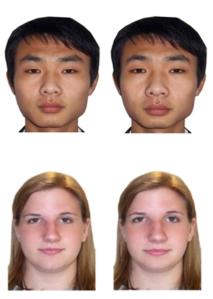 These photos were used in the experiment to test participants' abilities to distinguish faces. In each face pair, the features of an identity were undistorted in image (left) and either compressed or expanded in the other.