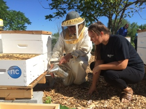 Environmental Technician student Christine Combe checks out beehives at Niagara College's new apiary, with the help of Dennis Edell, director of the Ontario Beekeepers' Association. Photo courtesy of Niagara College