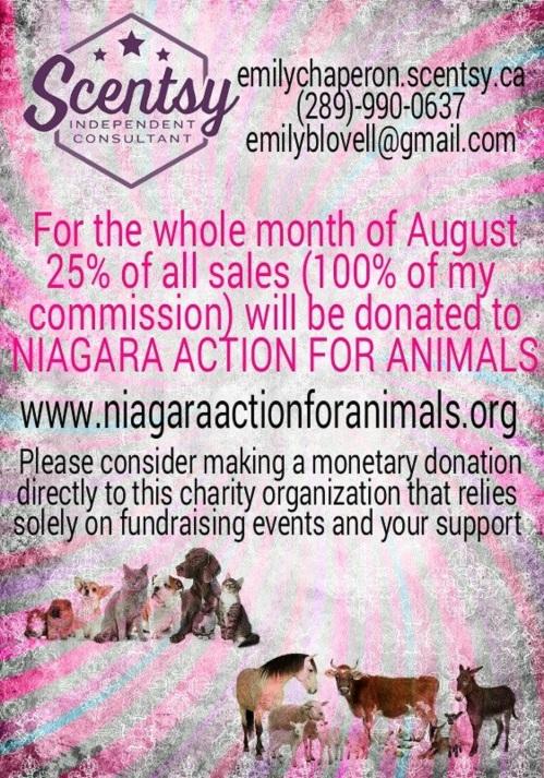 Scentsy NAfA Fundraiser