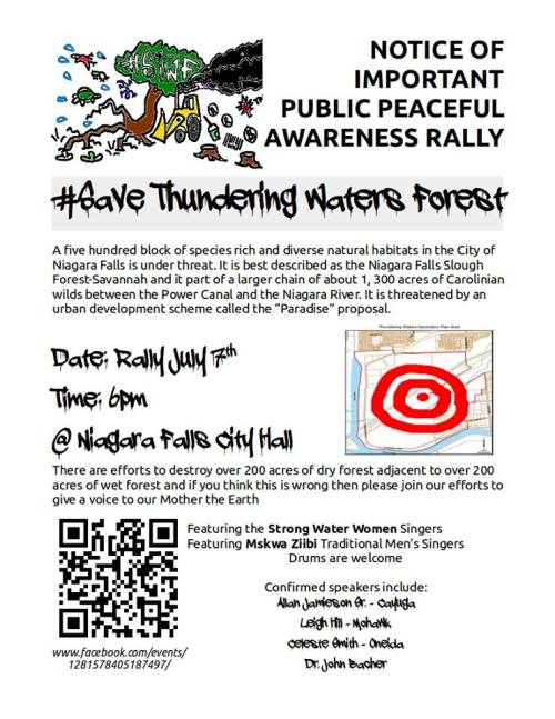 thundering rally poster