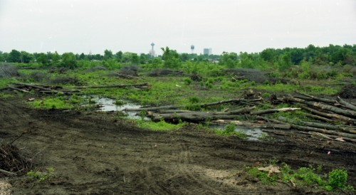 A news photo of some of what was left of a sprawling forest off Oldfield Road in southwest Niagara Falls, Ontario in 1992. This clear cut by developers played a role in driving the Ontario government to pass tougher tree cutting legislation in the province. File photo