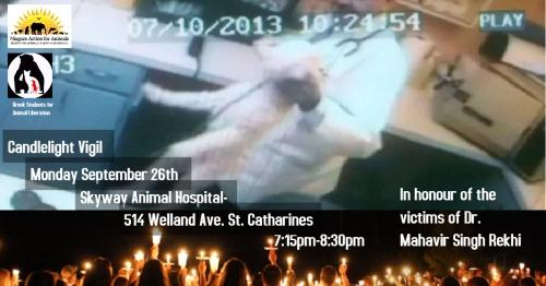 animal-vigil-poster
