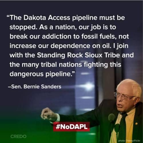 bernie-on-pipeline-fight