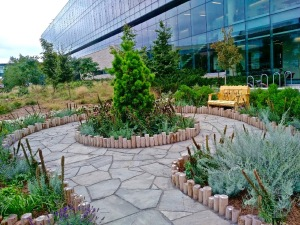 The Healing Garden to be officially opened at Brock University this October 4th.