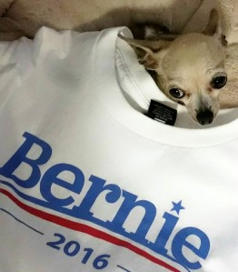 bernie-or-bust-with-pinky