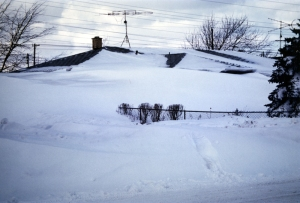 It was common to see whole houses buried up to the roof in snow.
