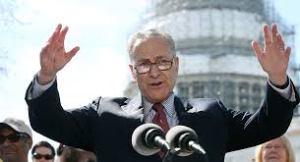 U.S. Senator Chuck Schumer of New York and Senate minority leader also vows to do everything he can to stop Trump rip up 'Obamacare'.